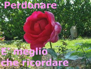 rosa bella ciao
