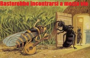 cicala-e-formica